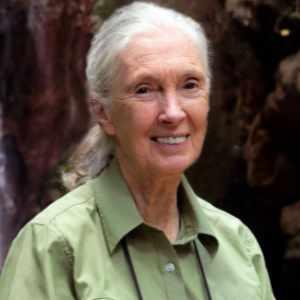 Speaker - Dr. Jane Goodall, DBE